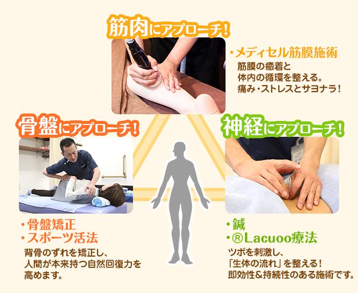 枚方市なつめ鍼灸整骨院は筋肉、骨盤、神経にアプローチします